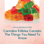 Cannabis Edibles Canada: The Things You Need To Know